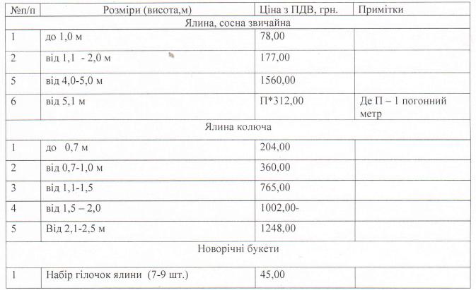 Цены на елки в Киеве под Новый год 2019