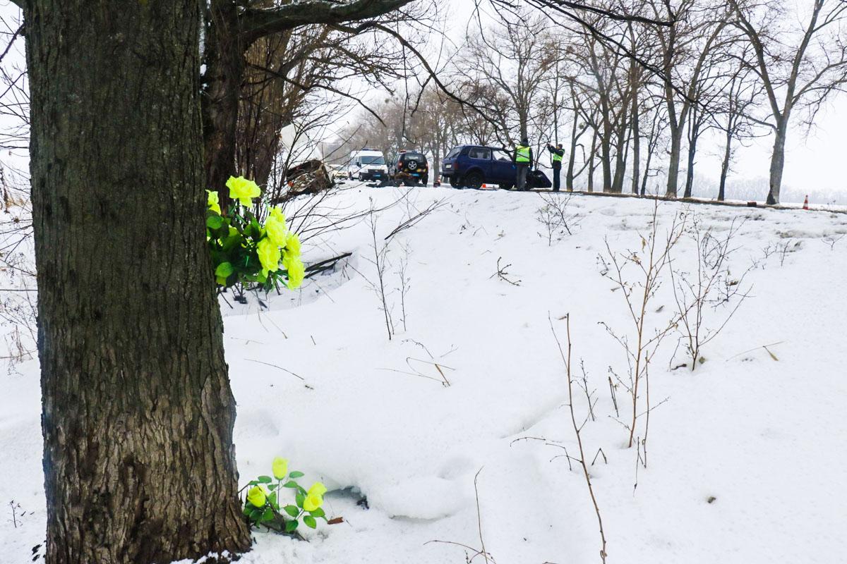 28 декабря на трассе Киев - Запорожье произошло смертельное ДТП