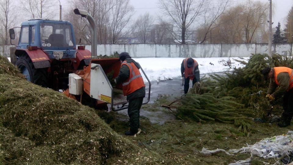 Также в Деснянском районе открыли пункт переработки елок