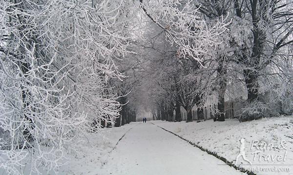 Красота этого парка - это просто волшебствоКрасота этого парка - это просто волшебство