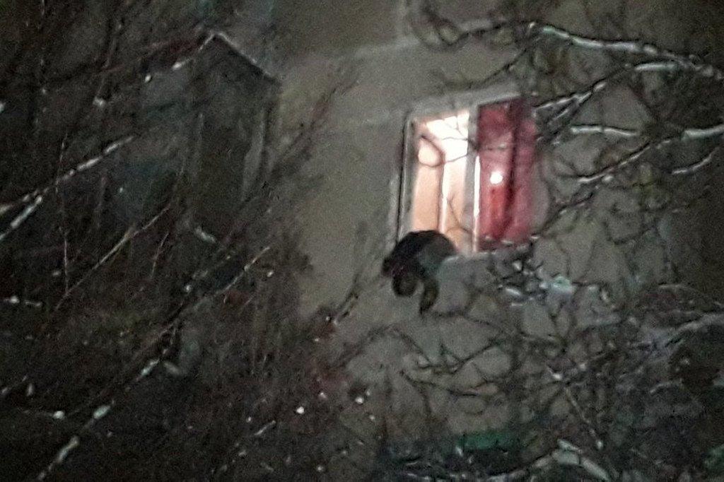 В ночь с 5 на 6 января в жилом доме в Мариуполе прогремел взрыв