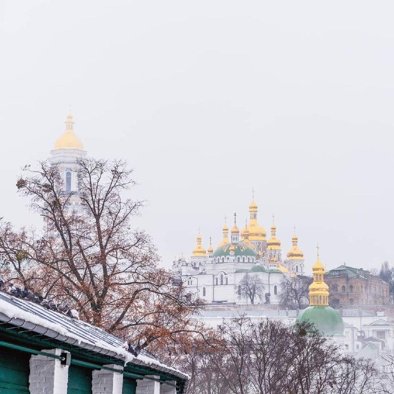 Эти желтые блики не скроет даже туман. Фото: @narcissa.orthodox