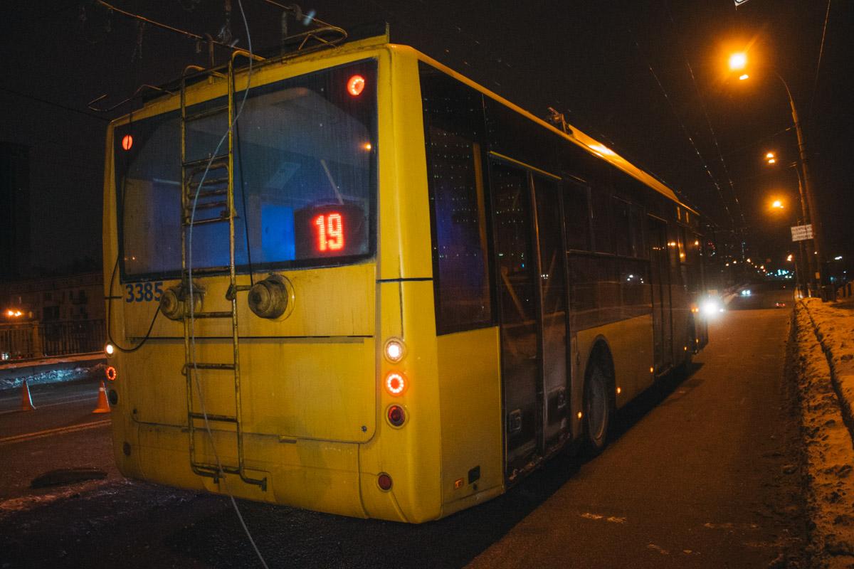 В результате чего, задела троллейбус и оборвала его провода