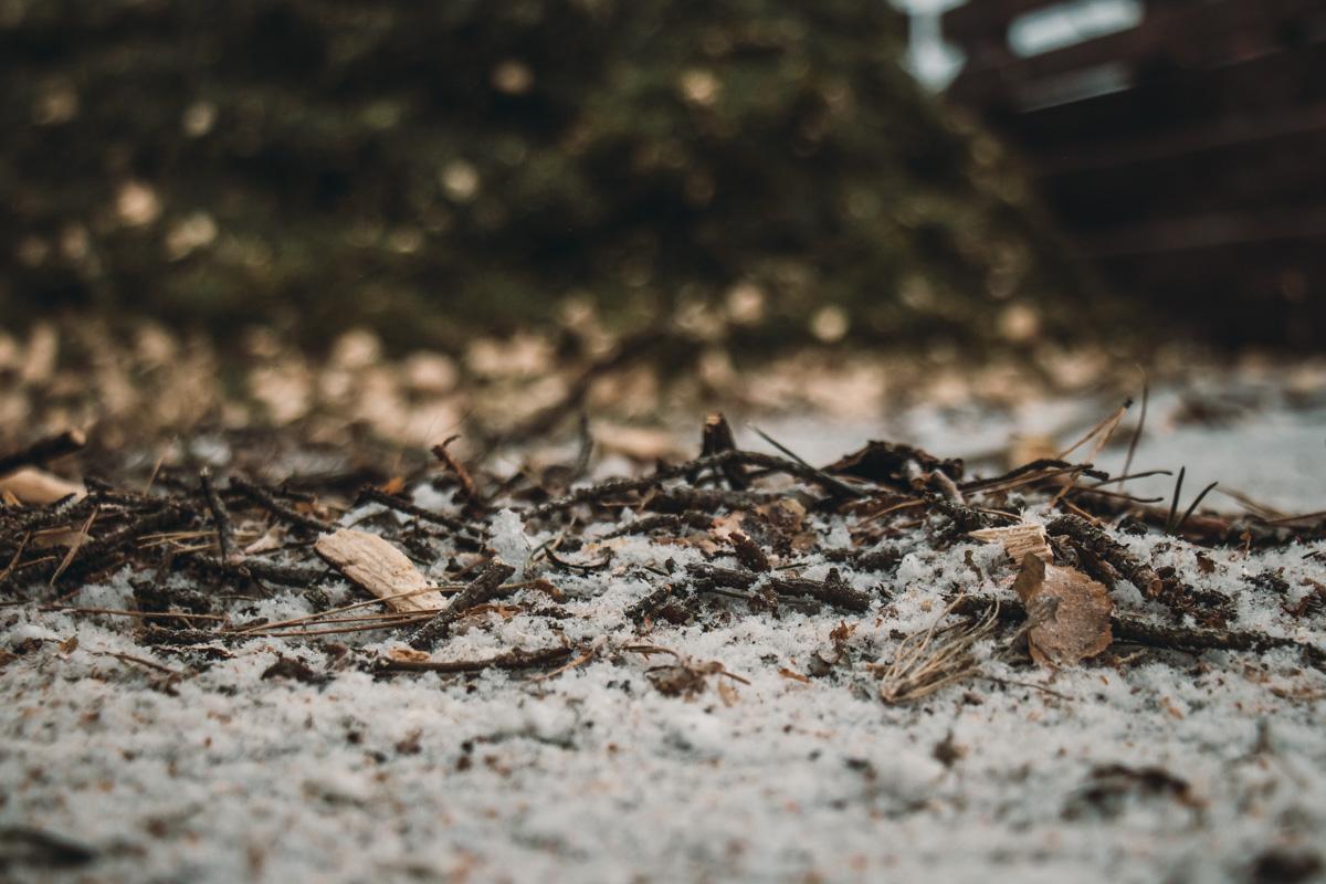 Измельченные ветки полезны для грунта