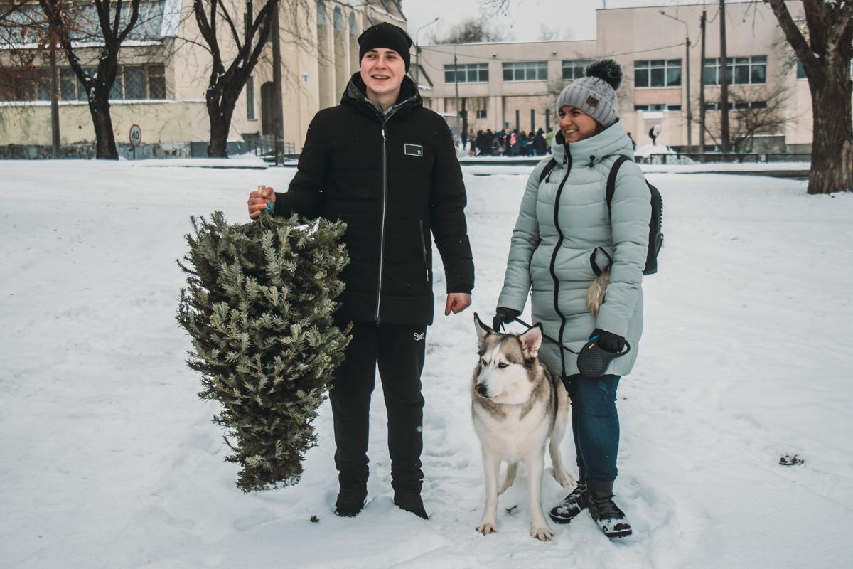Жители Дарницкого района начинают сносить елки к пунктам сбора