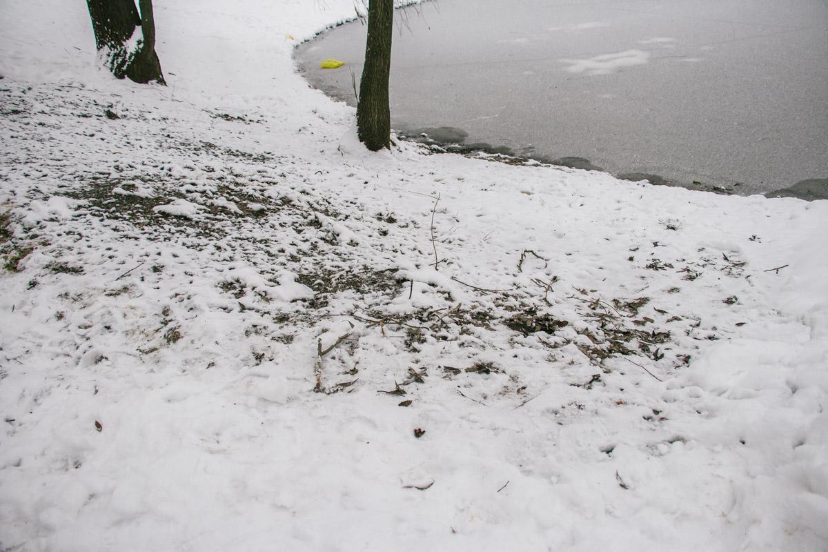 26 января в Киеве на Теремках кипяток хлынул в озеро