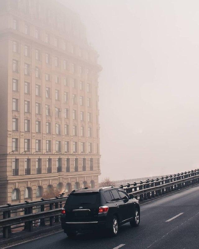 """""""Ежик в тумане"""" 21 столетия. Фото: @p_belskyi"""