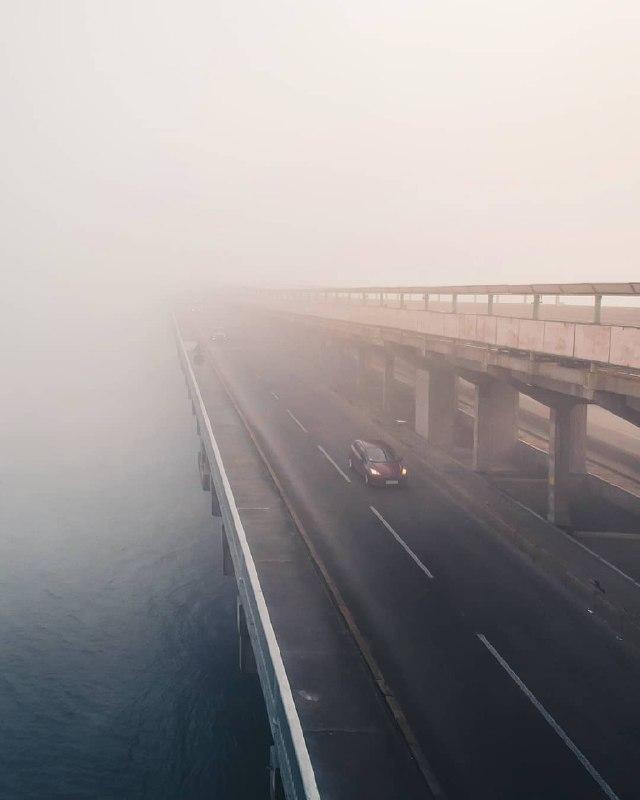 Туман, не оставляй меня в одиночестве. Фото: @p_belskyi