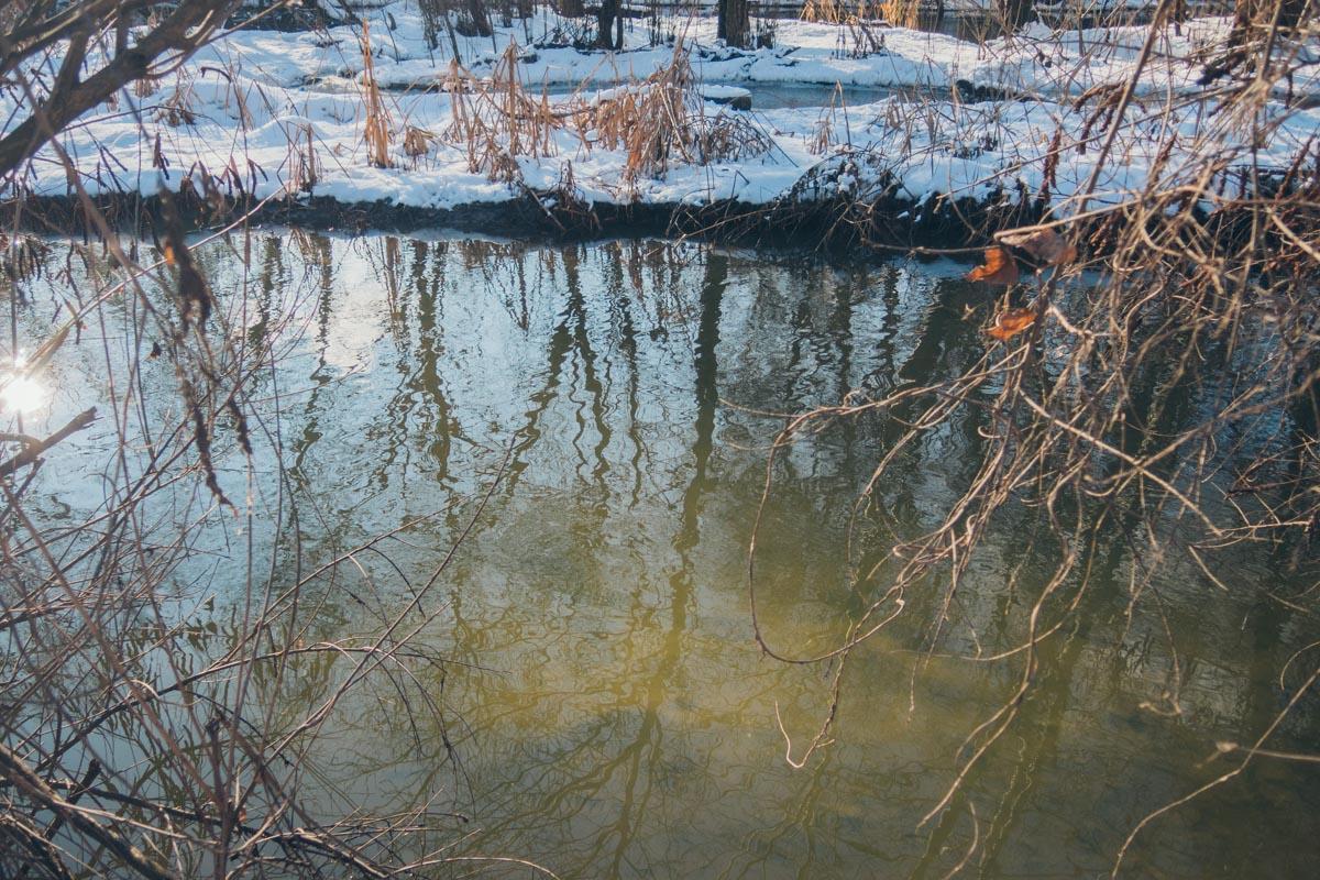На том же совещании было принято решение об очистке реки Почайна