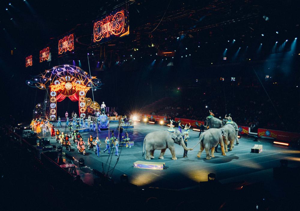 Впервые в Украине выступит современный немецкий цирк Black and White