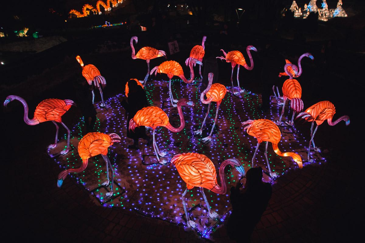 На Певческом полепроходит первый в Восточной Европе фестиваль гигантских китайских фонарей
