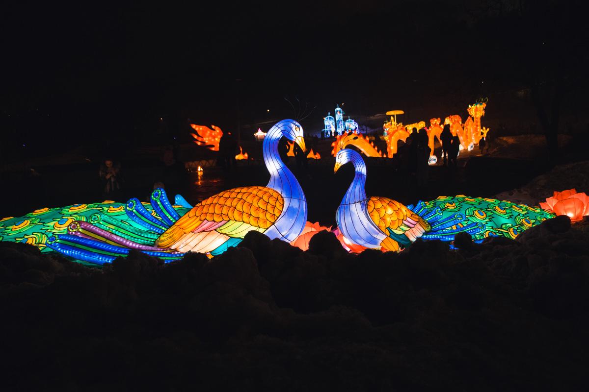 Фестиваль китайских фонарей - это одна из самых известных и посещаемых выставок, которая проводилась в более чем 40 странах мира