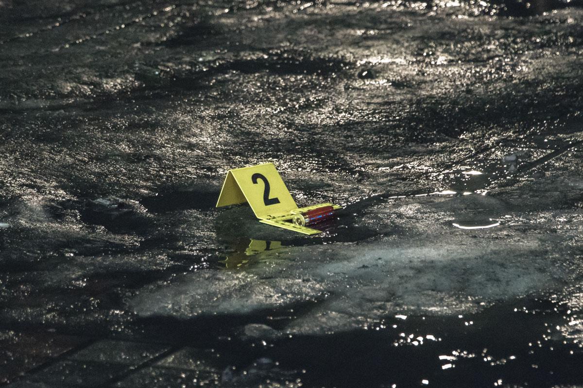 На месте были обнаружены несколько гильз от ружья 12-го калибра