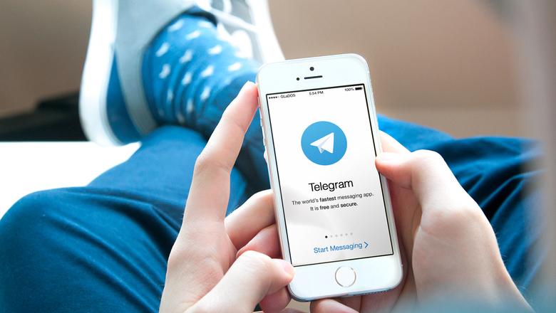 Появился Telegram-бот, с помощью которого можно сообщить о подкупе избирателей в Украине