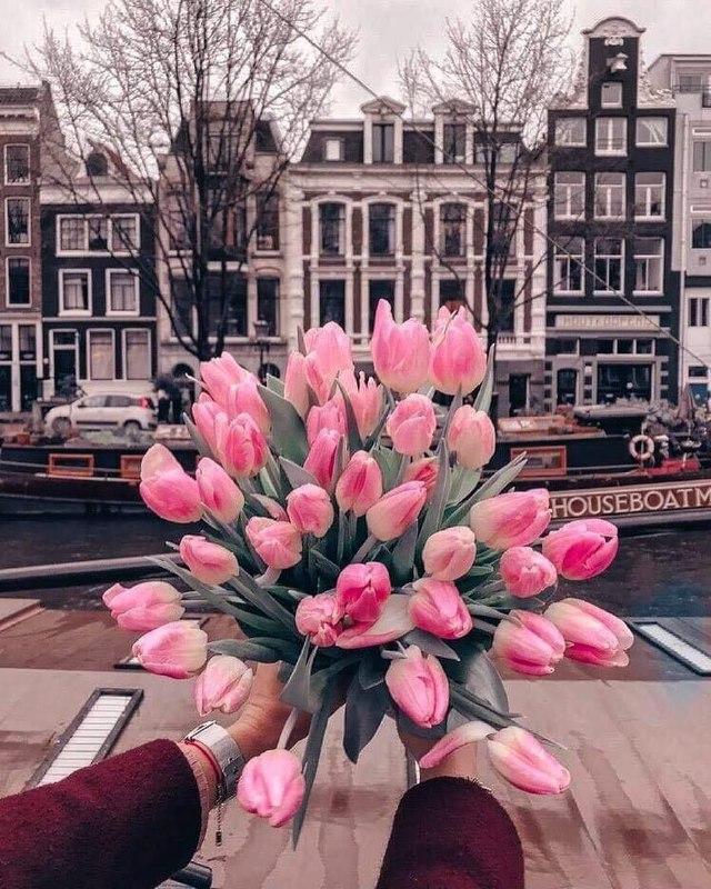 Когда от твоего розового букета мир вокруг тоже становится розовым. Фото: @isan.ua