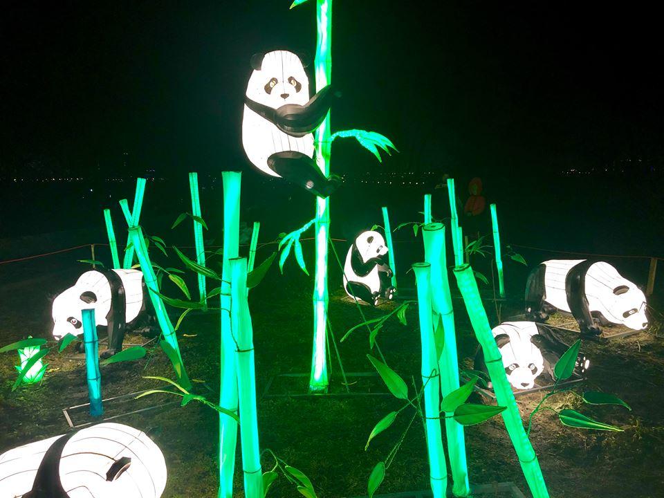 31 марта вас ожидает грандиозное закрытие фестиваля китайских фонарей. Организаторы обещают еще раз устроить такую фееричную выставку