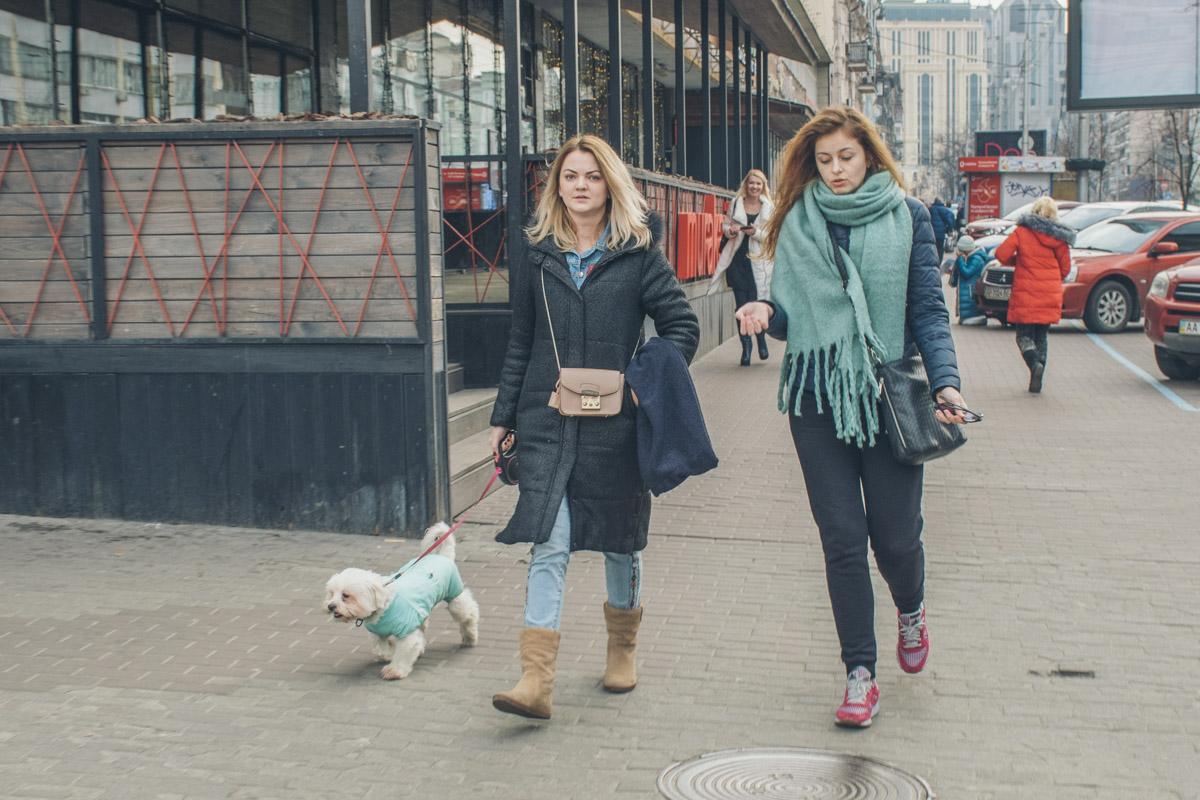Девочки-песики тоже сегодня гуляли с довольными мордашками