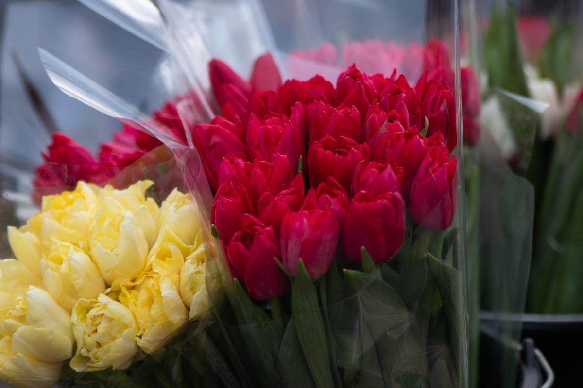 Там возникла стихийная цветочная ярмарка, которая растянулась почти по всему Золотоворотскому проезду