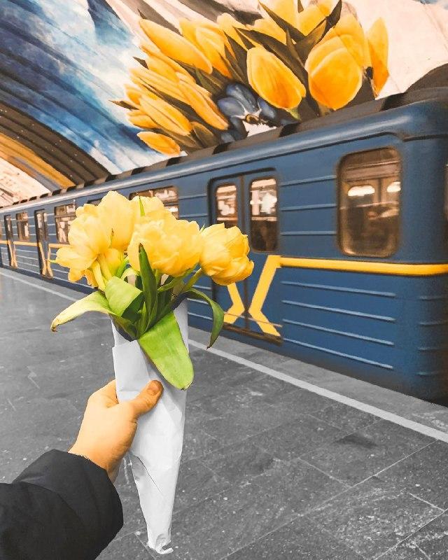Теперь тюльпаны можно видеть наяву, а не только на рисунках. Фото: @victoria_barkova