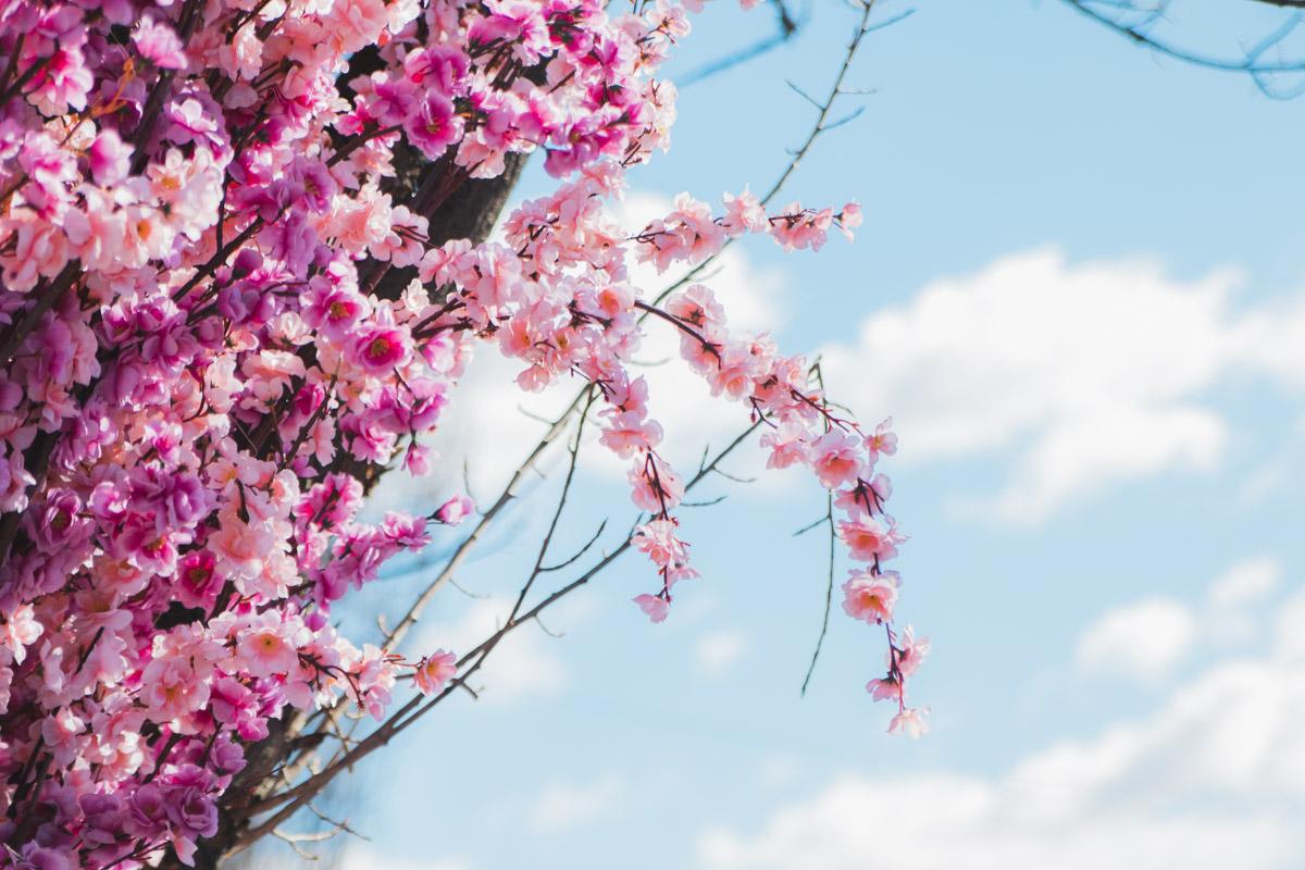 Весна!..