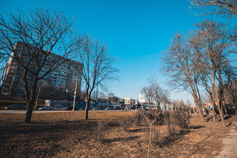 Массы пульпы растеклись по площади 30 гектаров