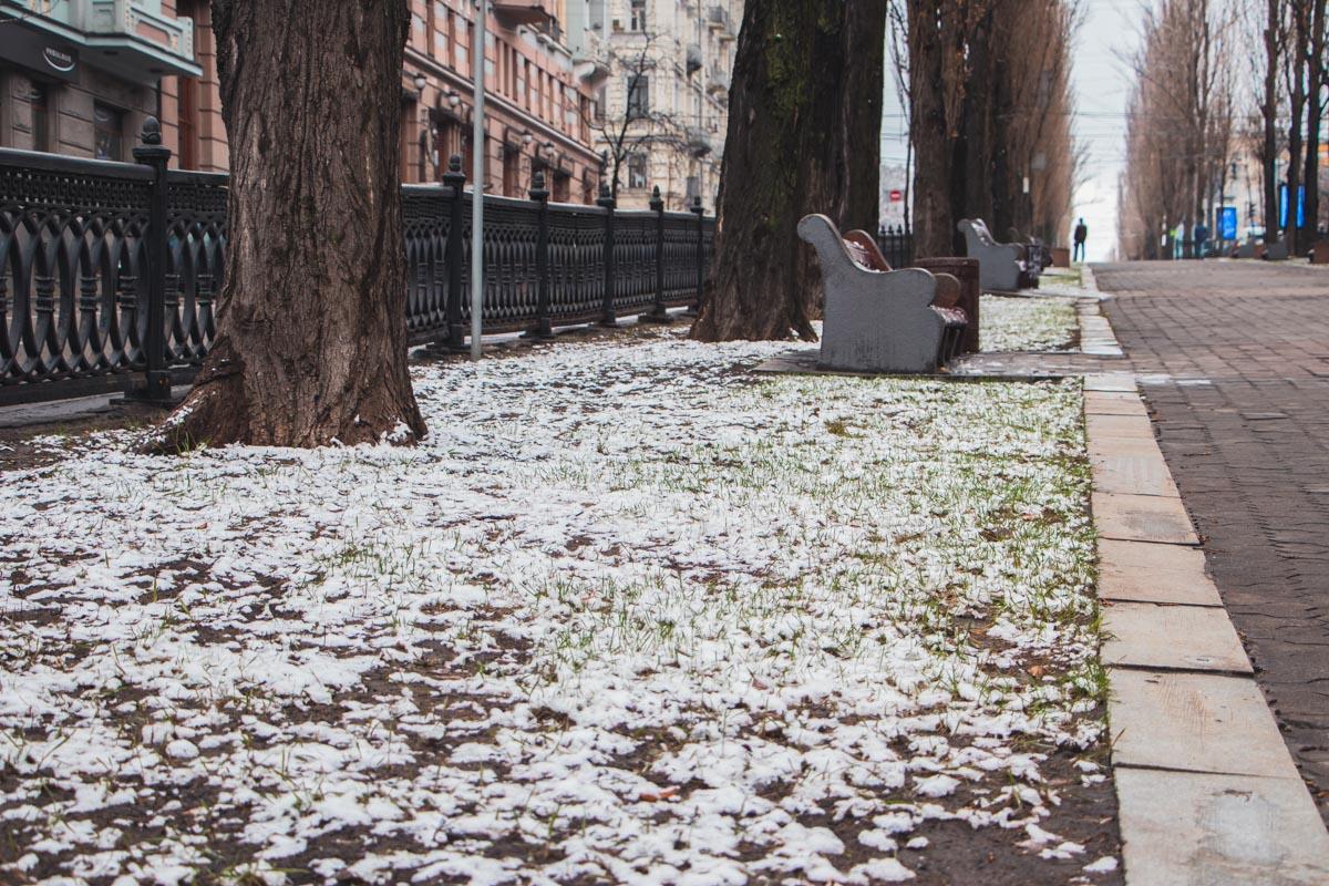 Весна победит! И мы совсем не о политике:)
