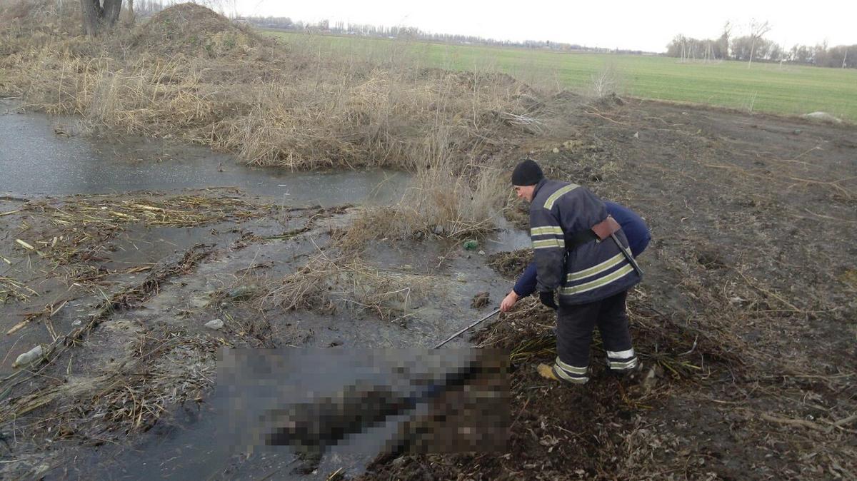 Тело 65-летней погибшей находилось в пруду на улице Колхозная