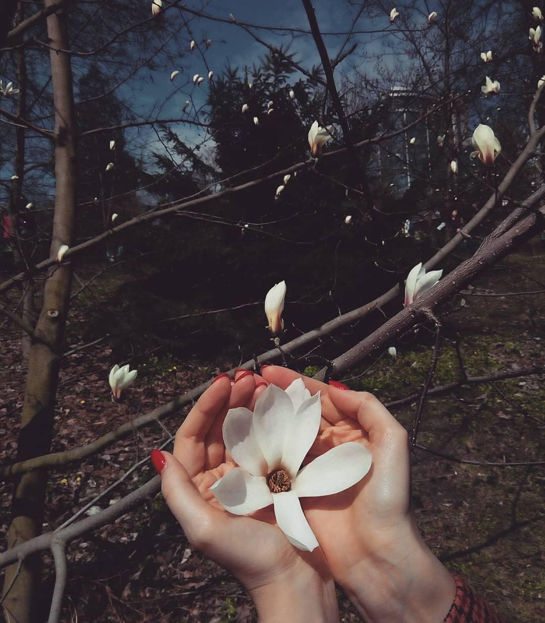 А вы знаете, как выглядит нежность? Фото: @anastasiia.savchenko4