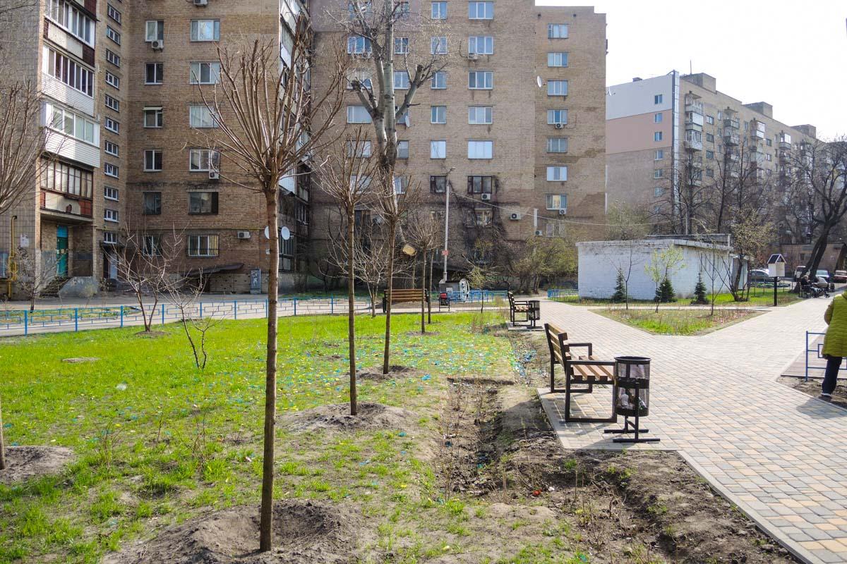 Коммунальщики посадили новые деревья