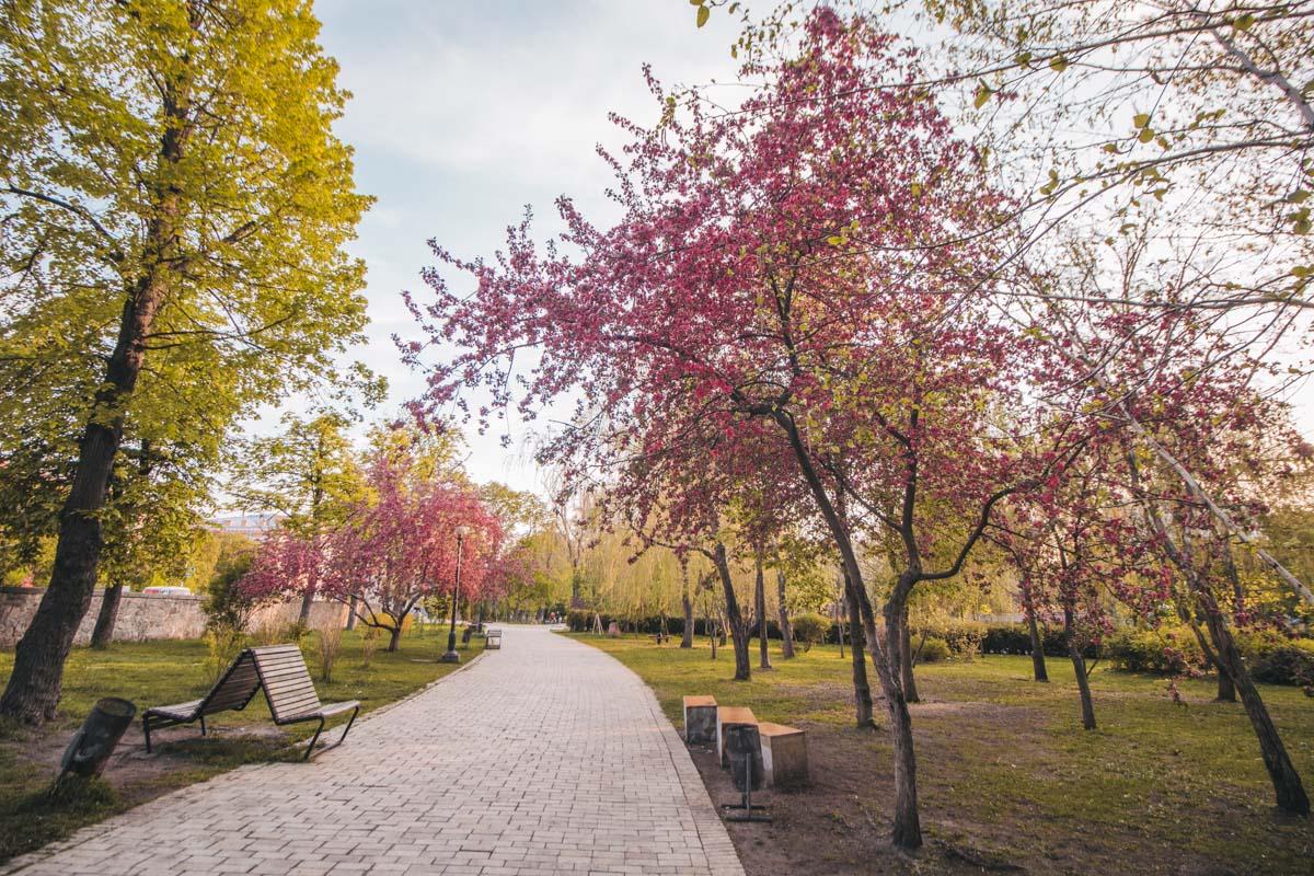 Можно прогуливаться в парке, и испытывать гордость от того, что здесь и сейчас весь он принадлежит одному человеку