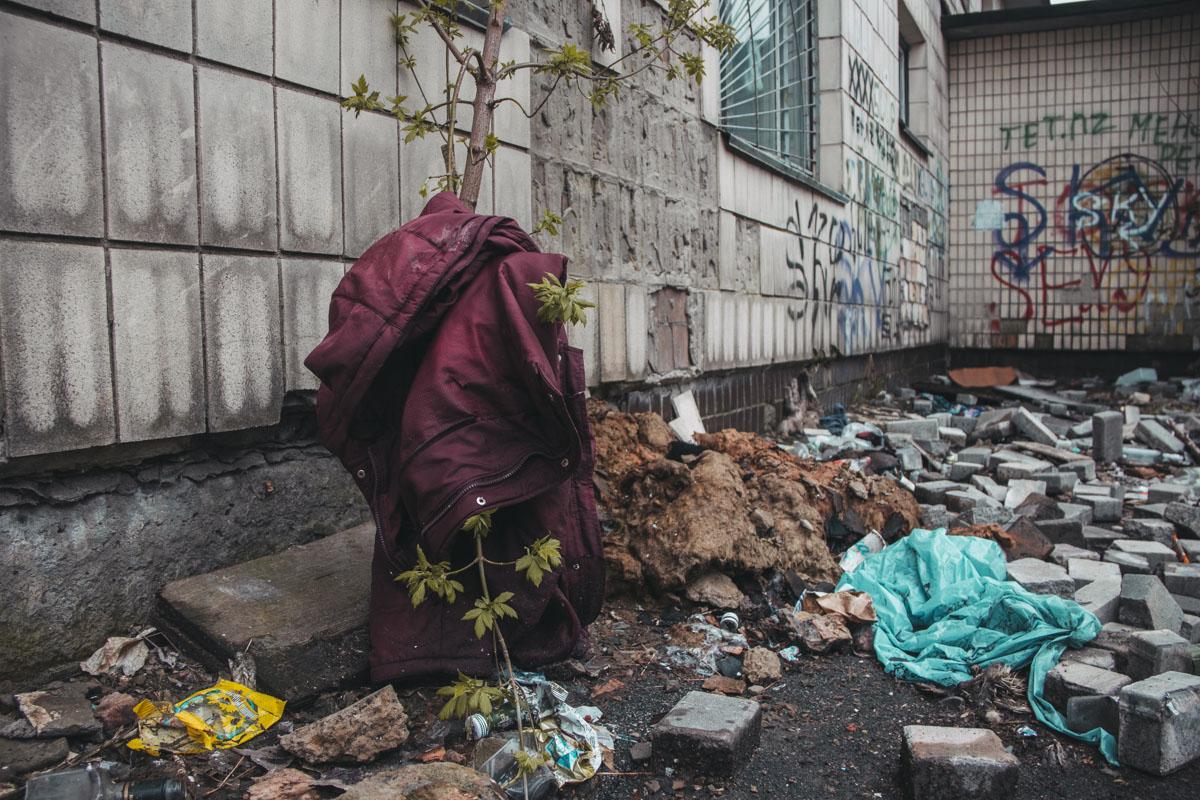 Дворовая территория садика завалена мусором
