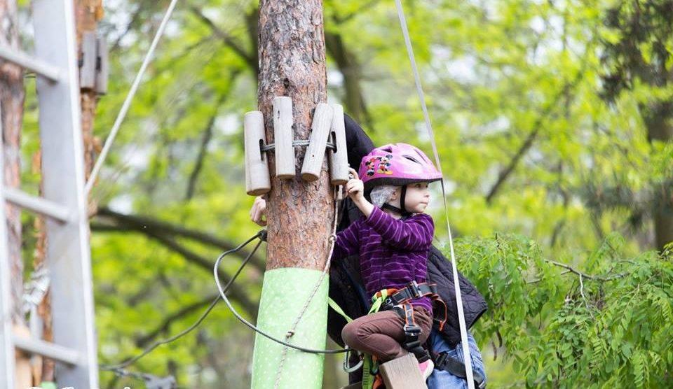 Детям точно будет интересно почувствовать себя скалолазами, но только по деревьям :)Детям точно будет интересно почувствовать себя скалолазами, но только по деревьям :)