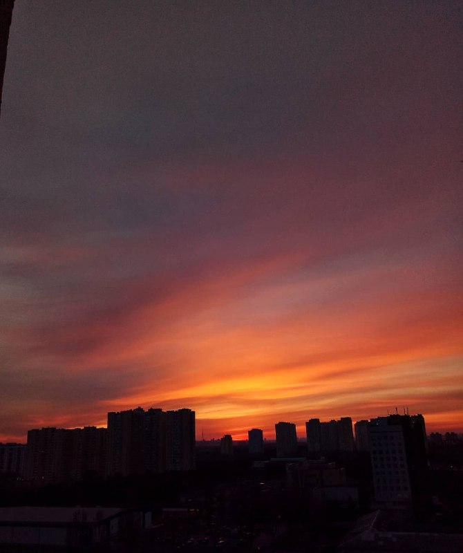"""Таким рисовали закат в мультфильме """"Король Лев"""". Таким мы видим его в реальной жизни. Один в один. Фото: @_dannaya_"""