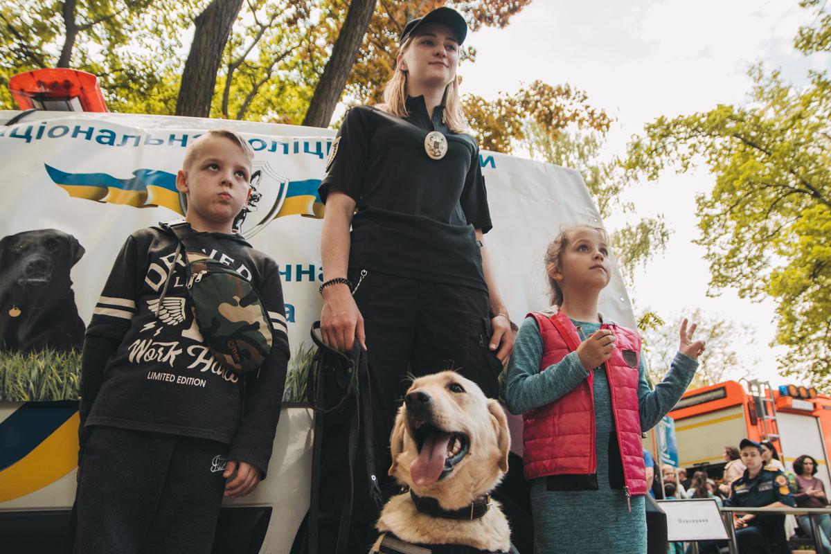 Полицейские собаки оказались очень дружелюбными