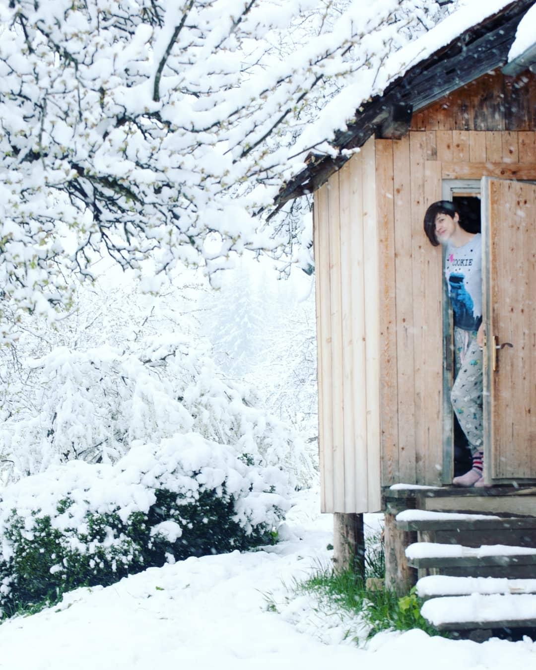 Для многих местных выпавший снег - это еще один повод остаться дома и провести день с близкими. Так, например, решила поступить @mavka_z_gorbiv