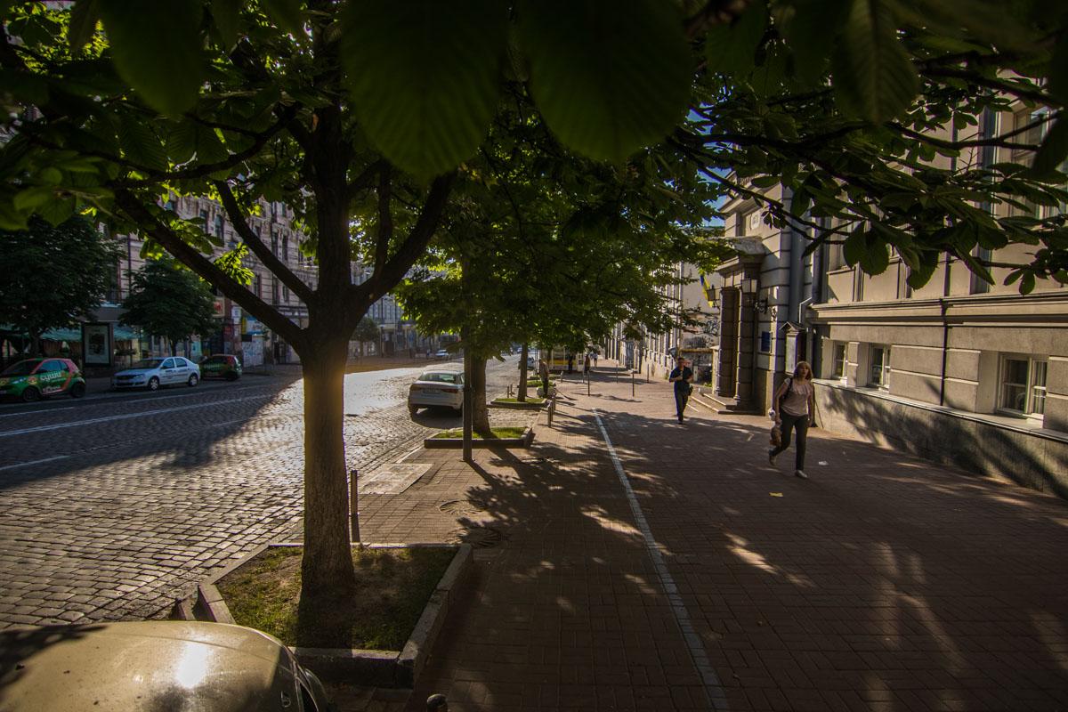 Локацию также планируют озеленить, высадив новые деревья