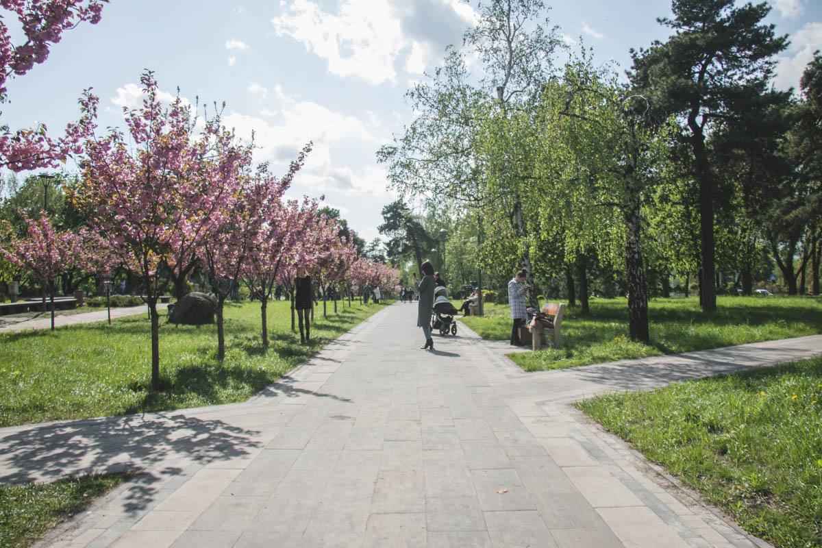 Парк - чистый и ухоженный