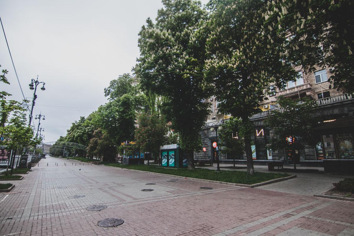 Когда ходишь здесь в час пик, кажется, что пустыми эти улицы не бывают никогда. Оказалось, бывают