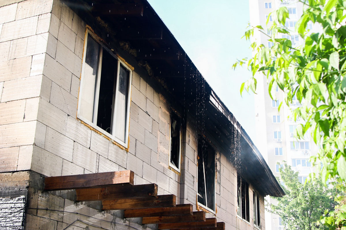 В пожаре погиб домашний кот