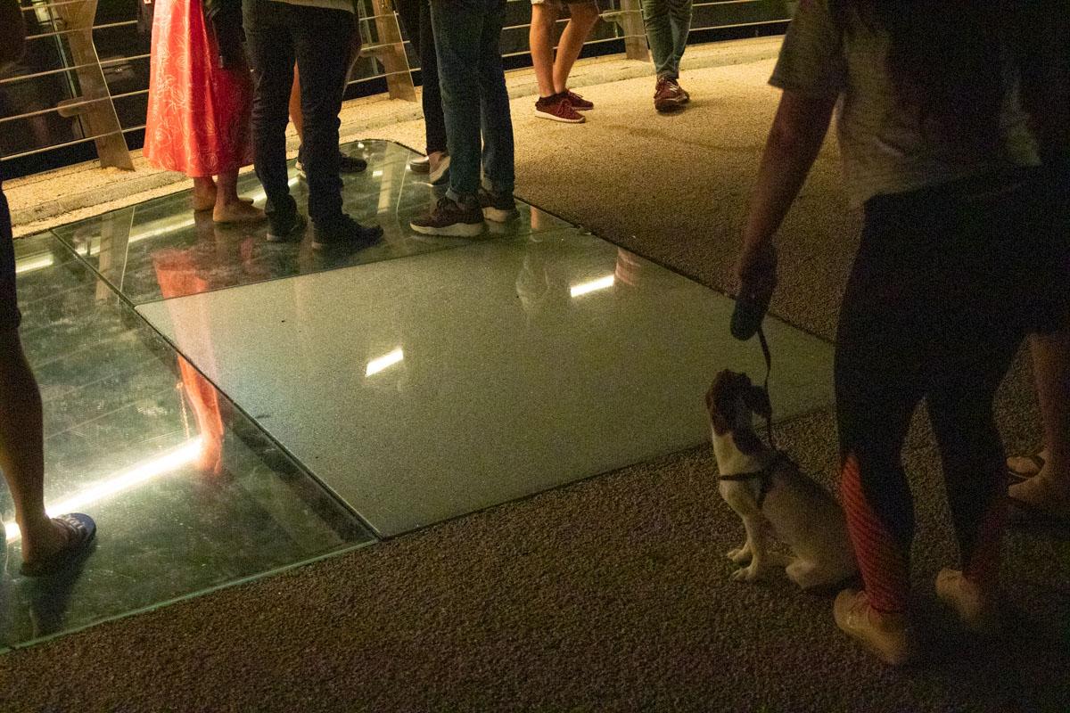 Одна из секций стеклянного пола повредилась в пятницу, 31 мая, около 22:40