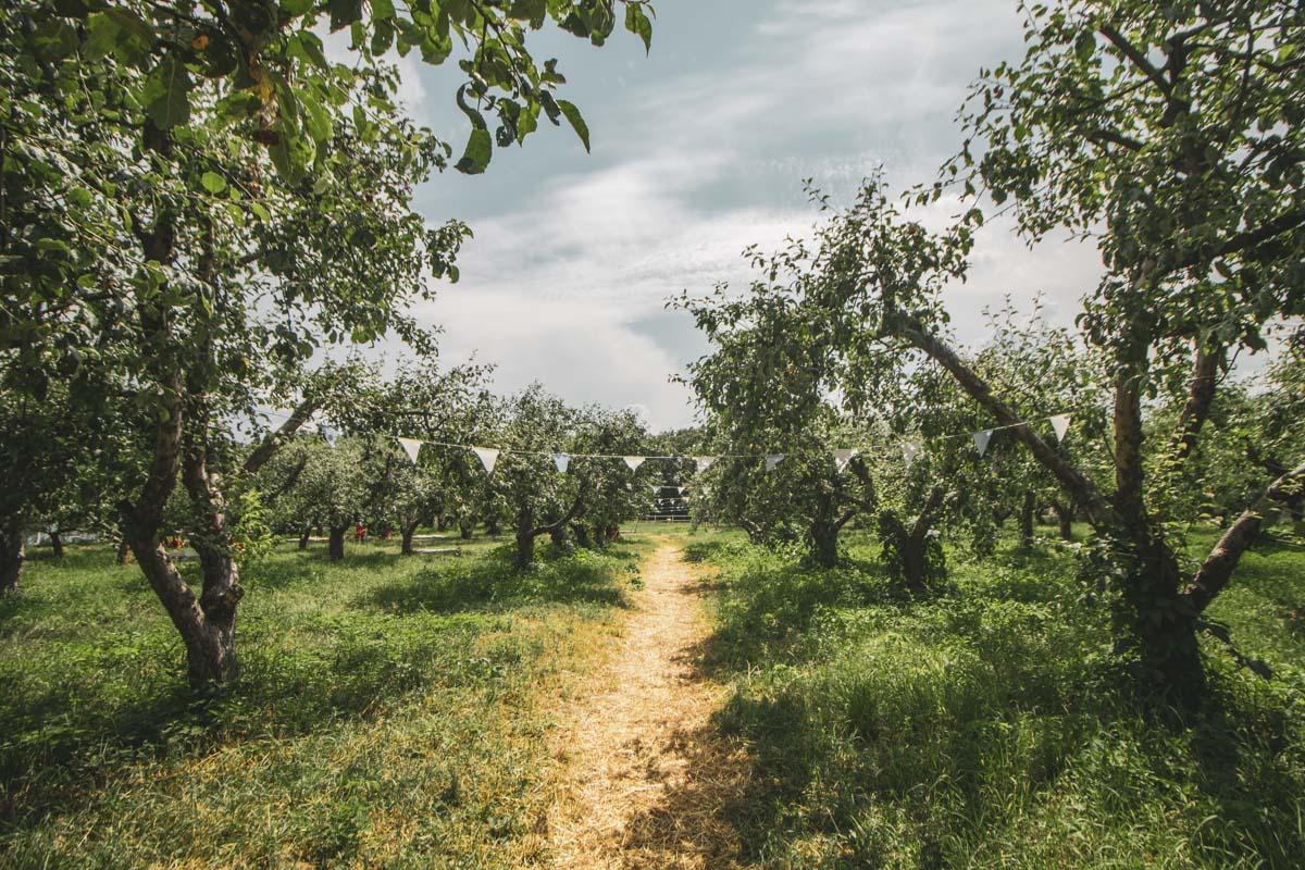 Среди яблонь на ВДНГ разместилась современная insta-зона — настоящий рай для любителей стильных фото