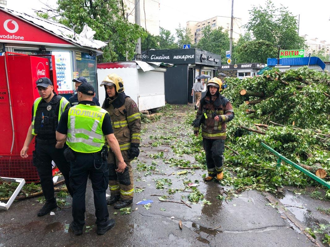 Спасатели оперативно разрезали дерево и освободили проход