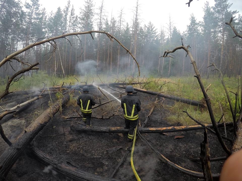 Спасатели долго не могли приступить к работе из-за мин в лесу