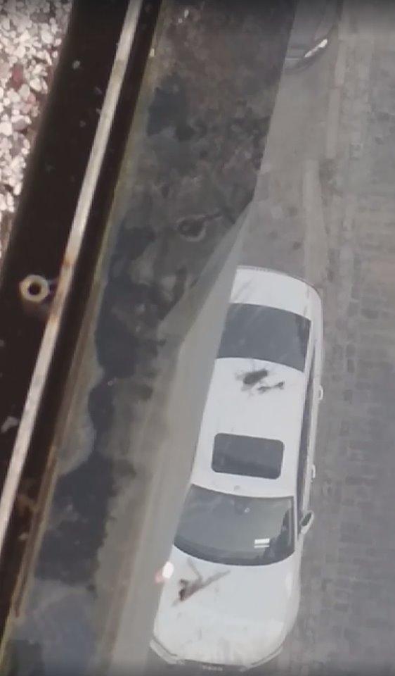 Скриншот видео. Автор Dmytro Vdoviko
