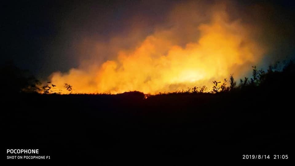 В селе Вишняки Хорольского района, Полтавской области, произошел пожар на свалке