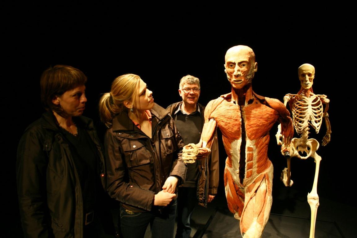 В Киеве на ВДНГ открылась выставка живых человеческих тел после смерти