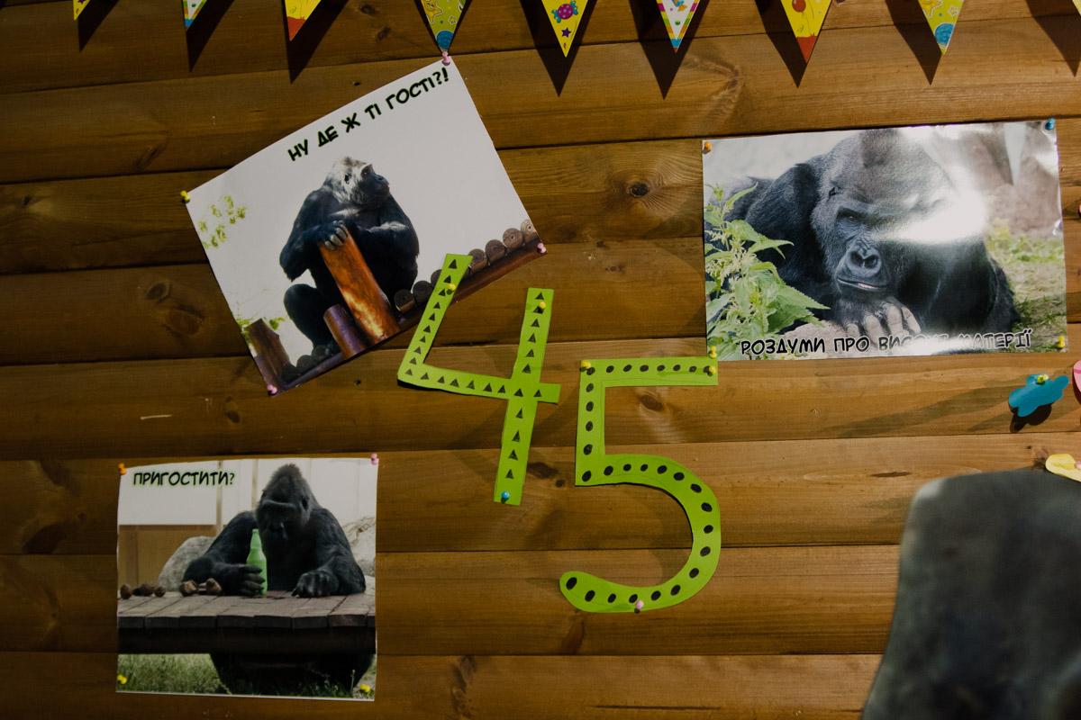 Равнинной горилле исполнилось 45 лет