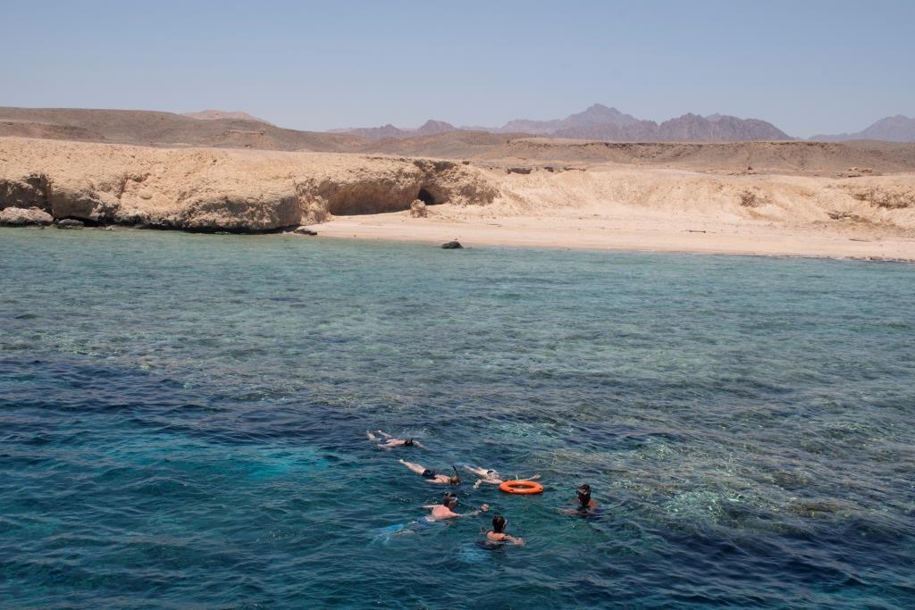 В Красном море самый богатый подводный мир, это стоит того, чтобы увидеть (фото, сделанное на экскурсии вне территории отеля)