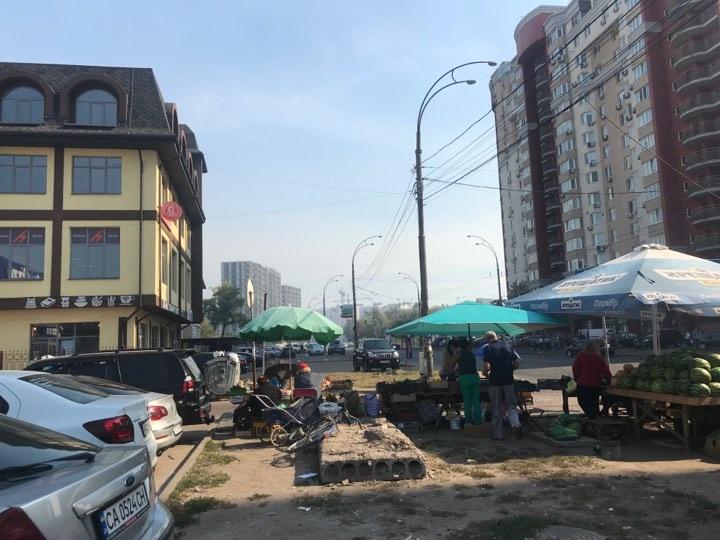 Основная причина данного явления - массовые пожары торфяников и травы в Киевской области