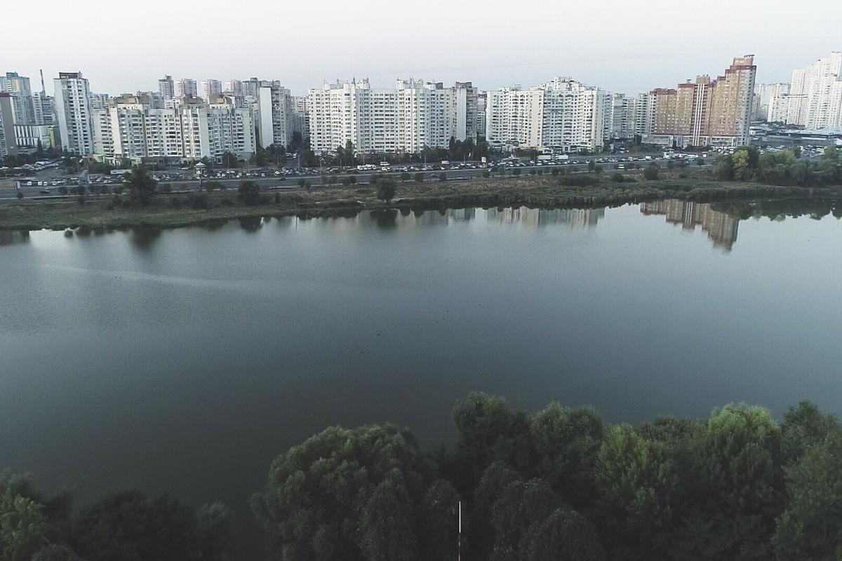 Лебединое озеро в Дарницком районе Киева собираются облагородить